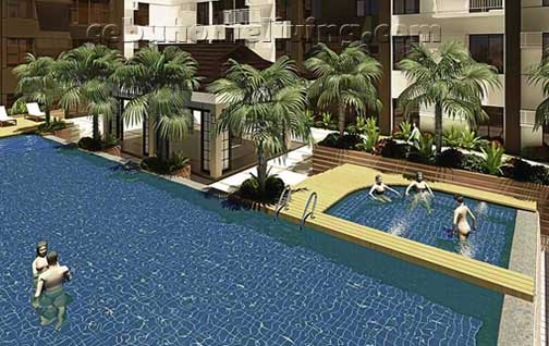 Amenities_pool